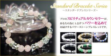 1057_standard_brace_1
