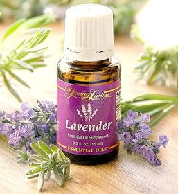2709_lavendor