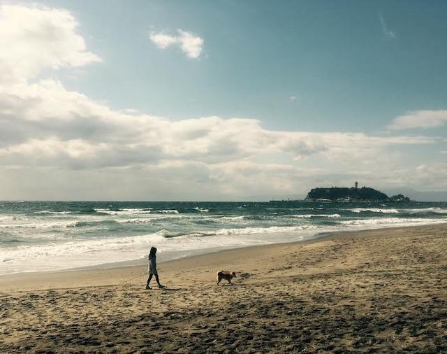 12549_七里ヶ浜海岸