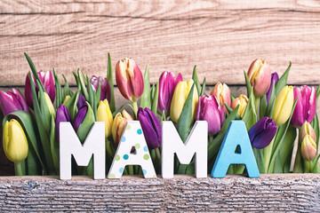 23604_mama