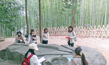 4698_sakafune_ishi_ms