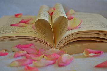119779_book-1169437_1280