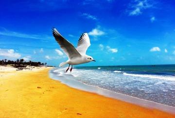 147847_beach-1019388_1280