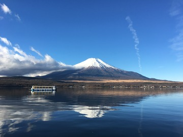 奥山文弥    地球の水辺環境 多摩川 魚  フライフィッシング