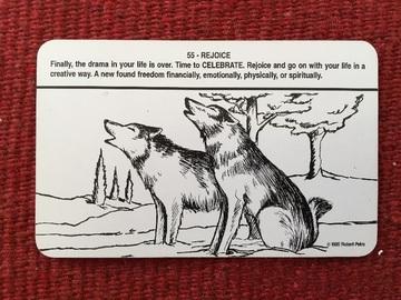 176896_wolf_6