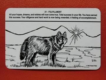 176896_wolf_7