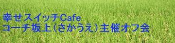 18760_green_plane130726