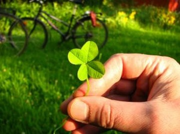 33807_four-leaved-clover-1_2834638