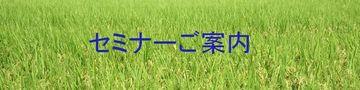4439_green_plane02