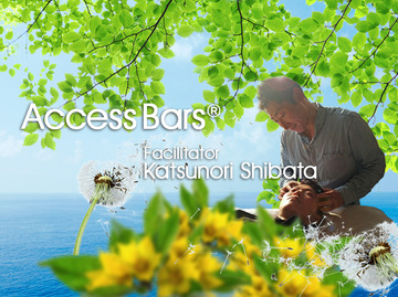 80266_shibata_fb
