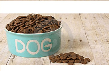 85993_dog-food-bowl-700px
