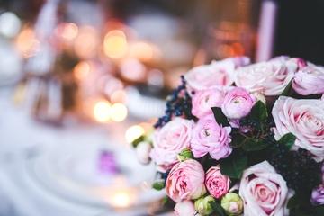 97381_flower-791140