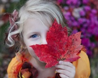 1873_photo-1458134580443-fbb0743304eb