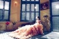 2981_wedding-dresses-1486004_640