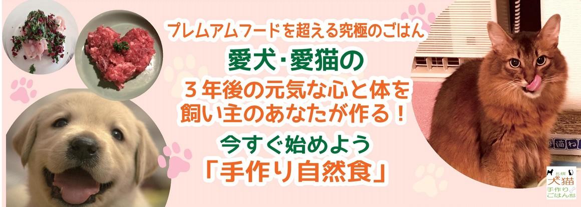13606_バナー用20170103-2