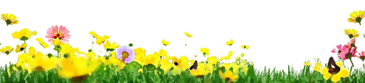 1512_flower1749i