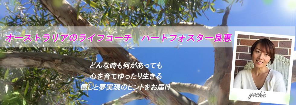 3746_yoshiesan-bana-03