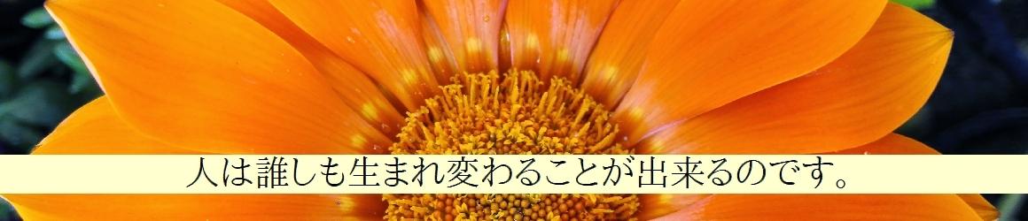 8859_maitop