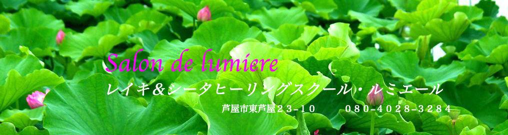 9172_hasu_010-4