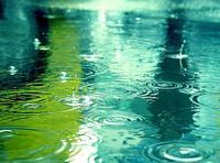 33182_雨