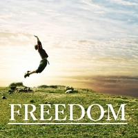 55450_freedom_banner